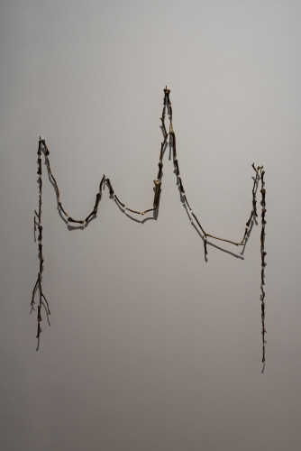 Sriwhana Spong, 《樂器H(怪獸鷄)》 ,2021年